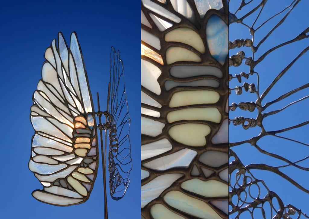 ailes de verre (2)